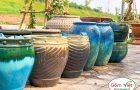 Gốm Việt – Cửa hàng cung cấp chậu cây chơi Tết đẹp – giá tốt